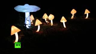 Волшебный лес на ВДНХ: в Останкинском парке проходит фестиваль «Вдохновение»