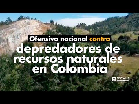 Fiscal Francisco Barbosa: Ofensiva nacional contra depredadores de recursos naturales en Colombia