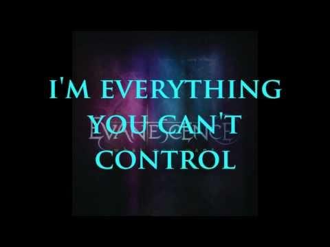 Evanescence - What You Want Lyrics