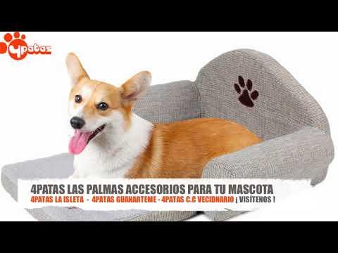 ¡OFERTAS! Camas para Perros y Mascotas en Las Palmas - 4Patas Las Palmas