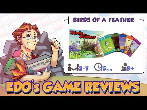Edo's Birds of a Feather Review