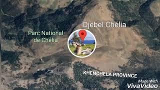 preview picture of video '#Alger, #Batna, #Chélia , #chilia, #shealia,#chealia, #الجزائر ، #جبال الأوراس  / B / 29/8/2018'