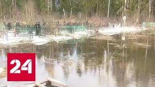Подмосковное кладбище ушло под воду