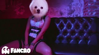 Becky G - Mayores  Bad Bunny -Cover Perros