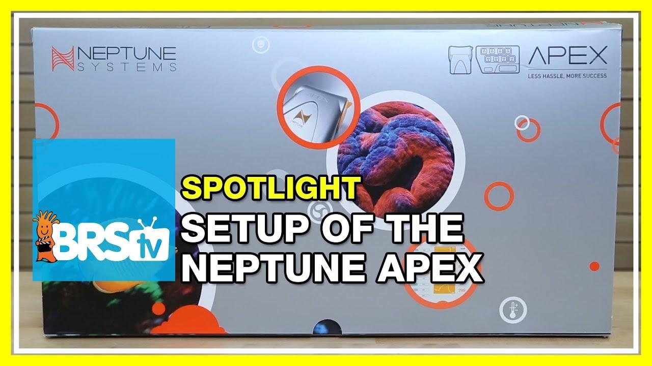 Neptune Apex Setup