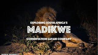 Exploring MADIKWE Game Reserve, South Africa