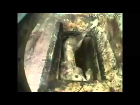Download Duhun Rashin Sani Yafi Duhun Dare Duhu Kai By Misbahu Jabir Damagaram +22797200671 HD Mp4 3GP Video and MP3