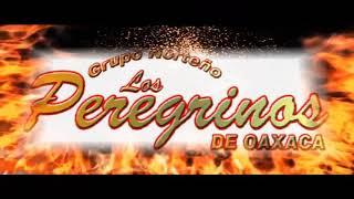 Se Va Muriendo Mi Alma - Los Peregrinos De Oaxaca