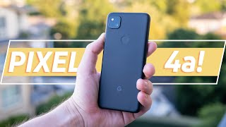 Google Pixel 4a review: The BEST Pixel phone?