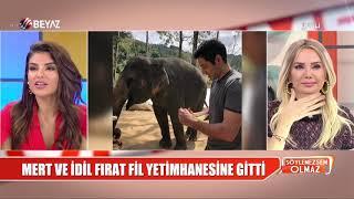 Ünlü çift fil yetimhanesini ziyaret etti