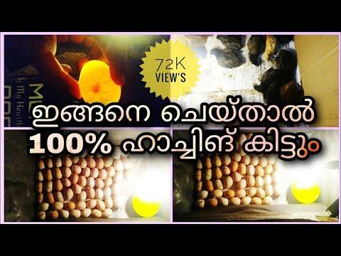 Shank prakshalana a parazitákról