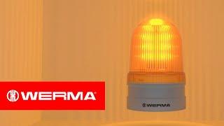 EvoSignal   Light effects
