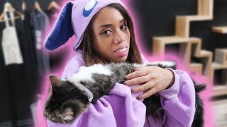BOZE BECOMES ONE WITH THE CATS!