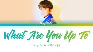Kang Daniel - What Are You Up To