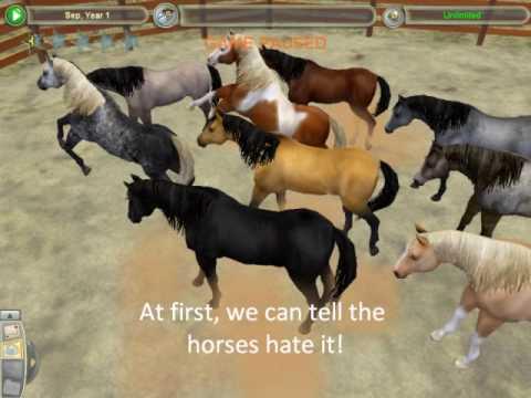 Zoo tycoon 2 Wild horses? | Yahoo Answers