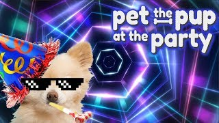 MUST PET THE DOGGY! - Pet the Pup at the Party