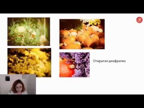 Отзывы об похудении с семенами льна