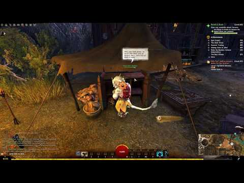 Guild Wars 2 - No Ingredients Wasted, Master Sous-Chef