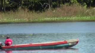 preview picture of video 'Viaje a Chiapas Zona Agua Azul - Palenque, by trucha1618xx'