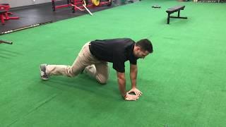 Tip of the Week: Triceps Variations