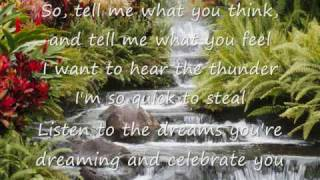 Celebrate You by Steven Curtis Chapman