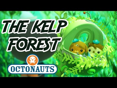 , title : 'Octonauts - Into the Kelp Forest   Undersea Adventures   Cartoons for Kids