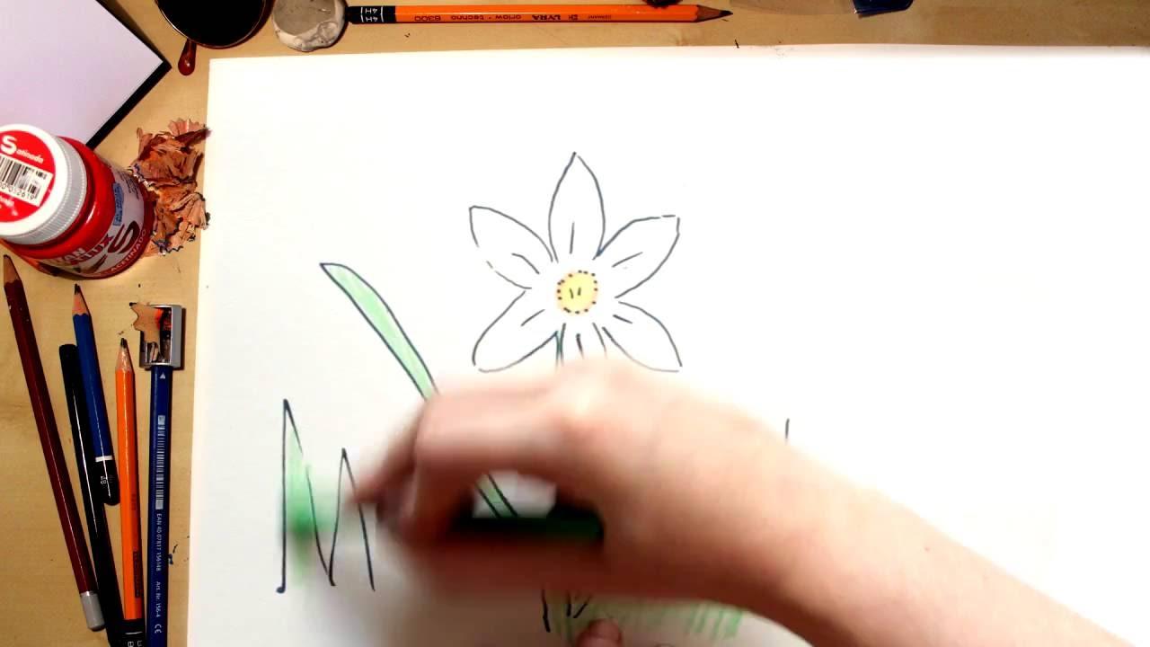 Como dibujar una Grandalla - dibujos de flores para niños