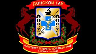 Флэшмоб факультета Ветеринарной медицины ДонГАУ