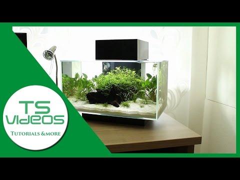 Designer-Aquarium? Fluval Edge 1 Review [Deutsch/German] - TSVideos [WERBUNG]