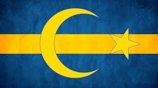 The Islamisation of Sweden