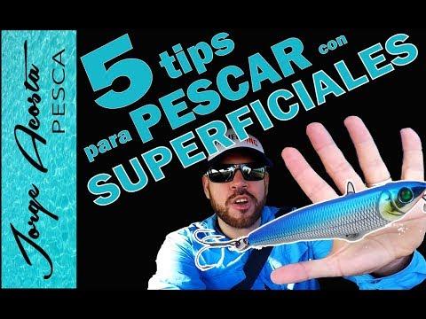 5 CONSEJOS para PESCAR con señuelos de SUPERFICIE!!!