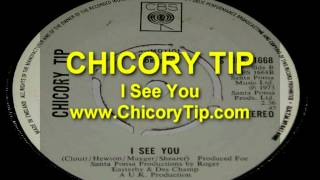 CHICORY TIP - I SEE YOU (AUDIO)