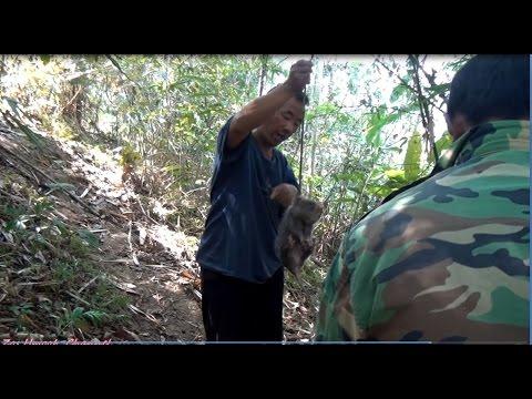 Tub Toj Siab & Npawg kuab Yaum Nkawv Mus khawb nas kos 2017