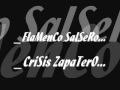 FLAMENCO SALSERO(crisis zapatero).wmv