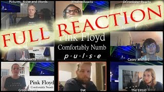 FULL MULTI REACTION Pink Floyd Pulse Comfortably Numb / MULTI REACT-A-THON
