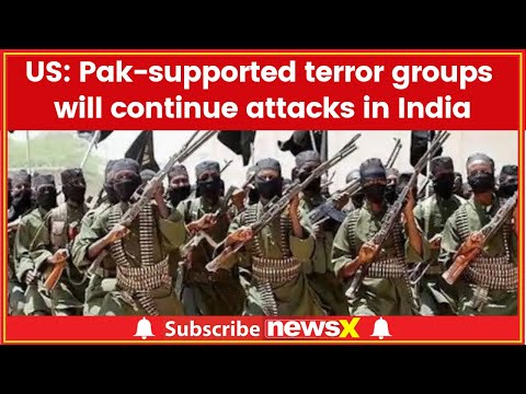 Pak-supported terror groups will continue attacks in India: US