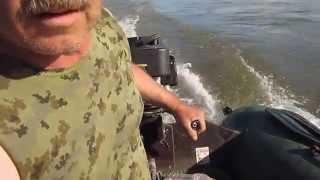 Лодка Тайга 320 ПЛМ гибрид G200VK+В8