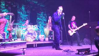 "The Damned ""New Rose"" / ""Neat, Neat, Neat"" - May 11, 2017"