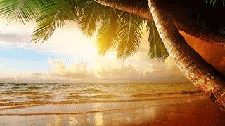 Peaceful and Relaxing Instrumental Meditation Music   Ocean   Flute   Guitar