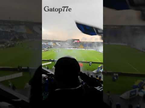 """""""Cuando sales a la cancha MILLONARIOS - BLUE RAIN"""" Barra: Blue Rain • Club: Millonarios"""