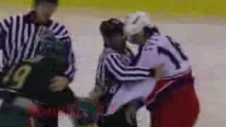 Brawl Alex Svitov Fight for NHL