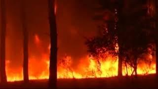Берегите природу от пожаров
