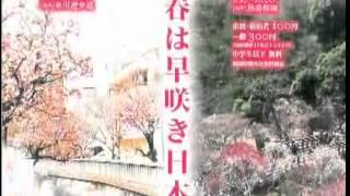 焼津マリンレディが静岡観光をPR