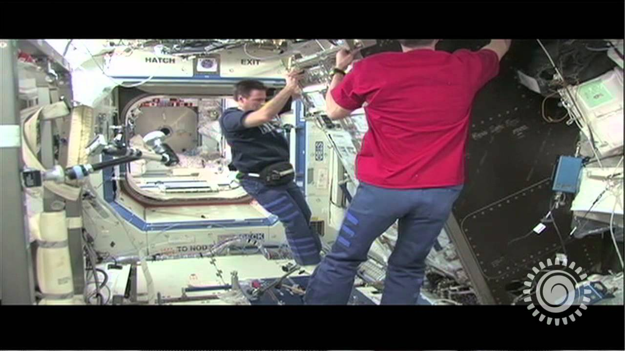 NASA's Space Shuttles Helped Advance Salmonella Vaccine Research