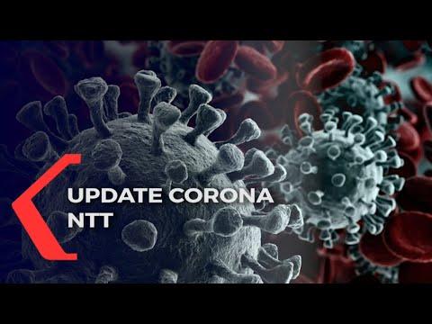 update corona ntt selasa tambah kasus corona di ntt tembus angka