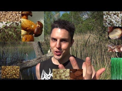 Granatapfelsaft und Granaten in Diabetes