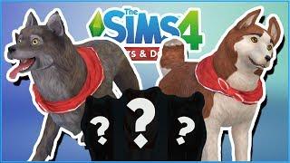 Balto & Jenna's Puppies?! 🐱🐶 Sims 4: Cats & Dogs