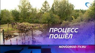 В деревне Полометь построят мост через реку