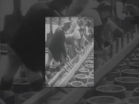 La varice variqueuse tselljulit