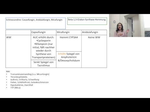 Diskussion über die Verhinderung der essentiellen Hypertonie